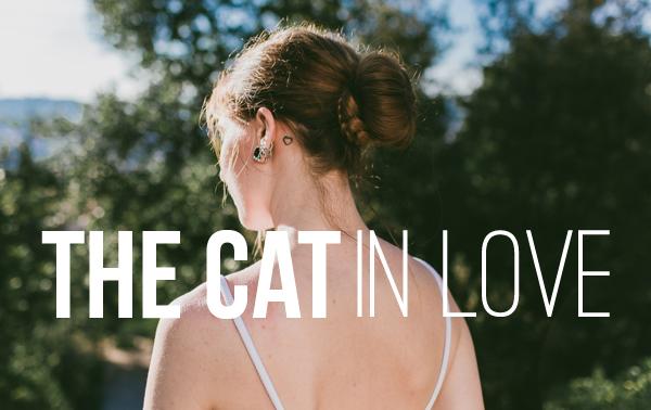The cat in love