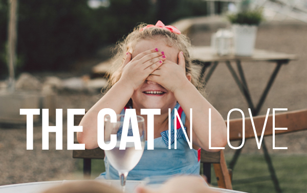 The cat in love