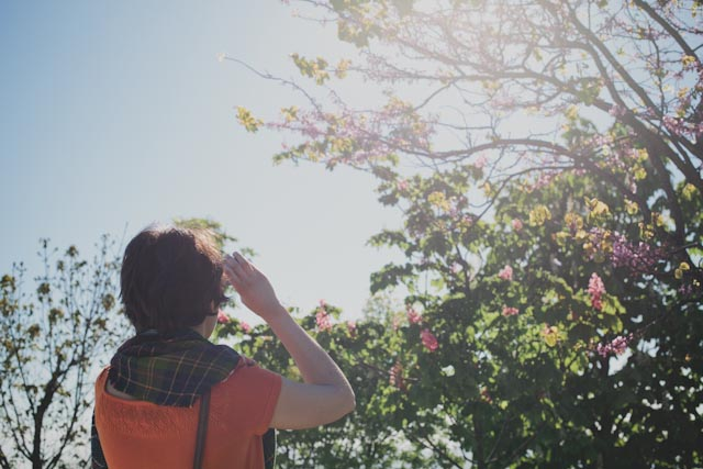 light at the botanical garden