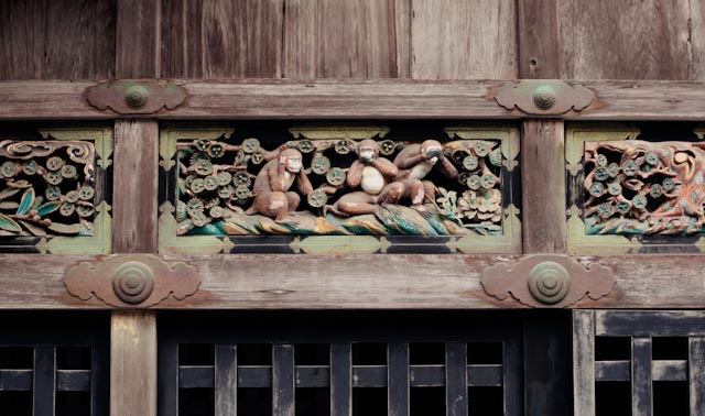 Nikko monkeys