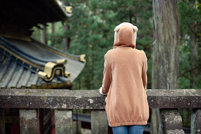 Nikko bear