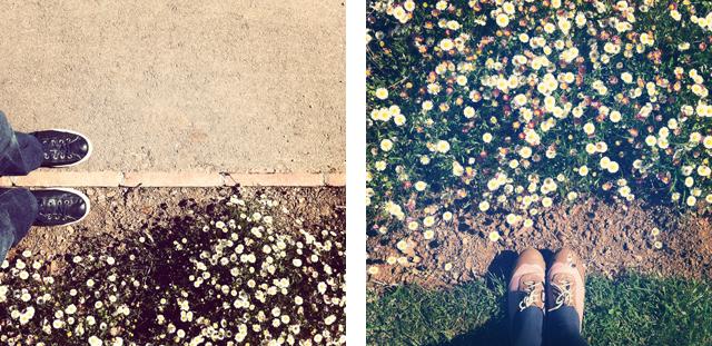 parc de les roses