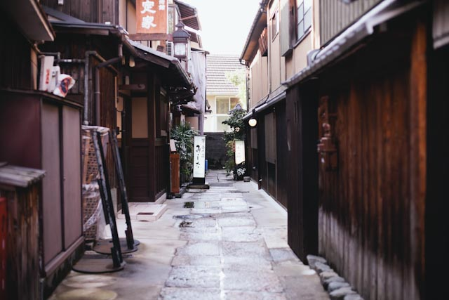 Kyoto streets - the cat you and us