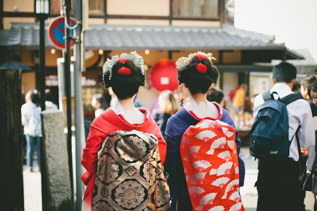 Geishas back - the cat you and us