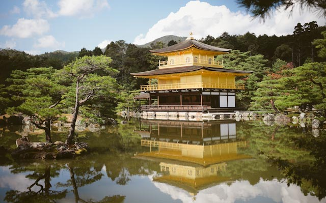 Kinkaku-ji - the cat you and us