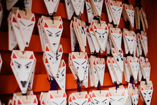 Fushimi Inari kitsune - the cat you and us