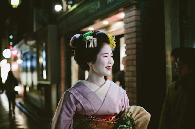 Lovely geisha - the cat you and us