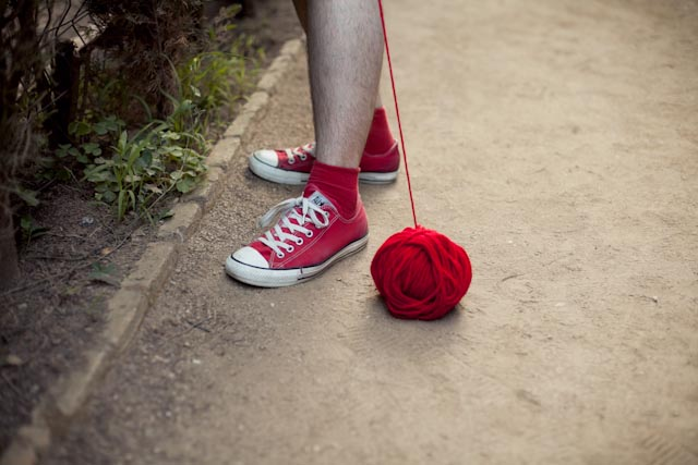 red wool red shoes - the cat, you and us