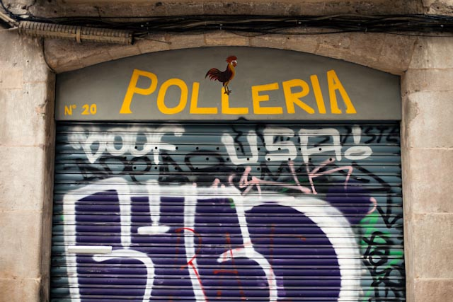 polleria - the cat, you and us