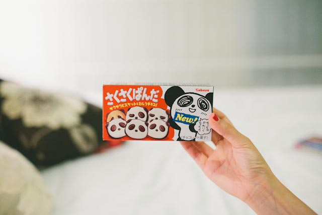 panda cookies - the cat you and us