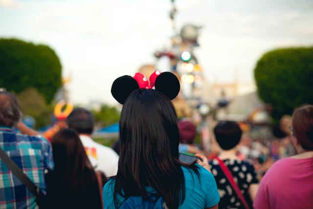 Minnie mouse ears - the cat you and us