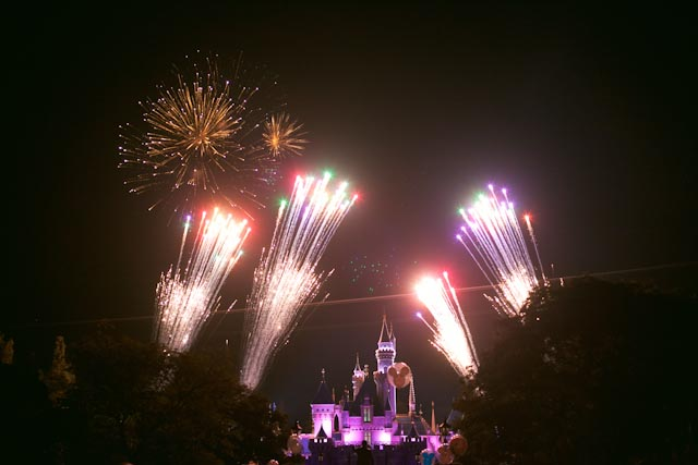 the fantastic fireworks at Disneyland - the cat you and us