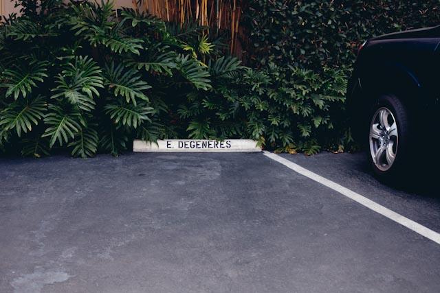 Ellen Degeneres parking spot - the cat you and us