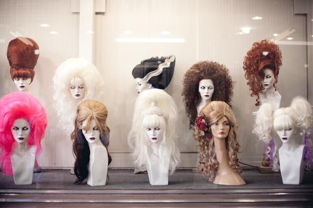 Hollywood wigs - the cat you and us