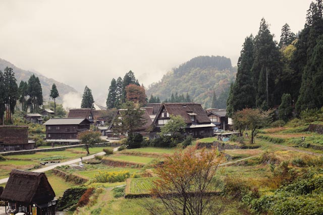 Ainokura village - The cat, you and us