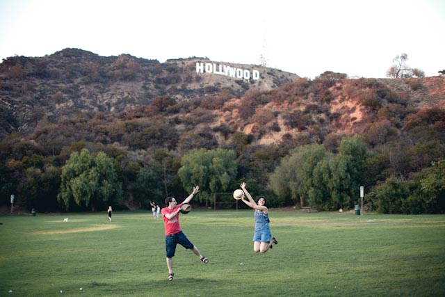 Hollywood sign - the cat you and us