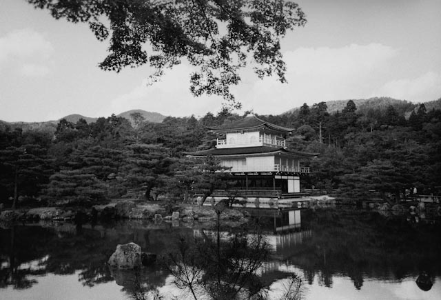 Golden Pavilion in B/W - The cat, you and us