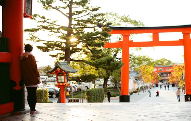 Fushimi Inari sunset - The cat, you and us