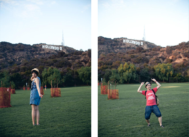 Hollywood sign - the cat, you and us