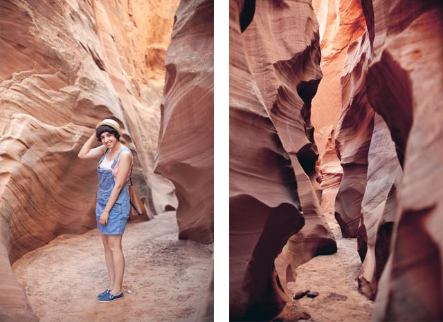 Damaris Secret Canyon - The cat, you and us