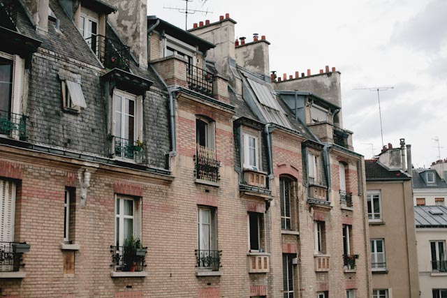 Paris buildings - The cat, you and us