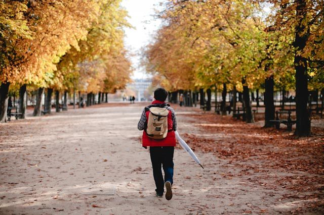 Le jardin du luxembourg - The cat, you and us