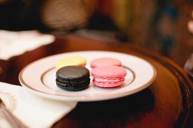 Laduree macarons - The cat, you and us