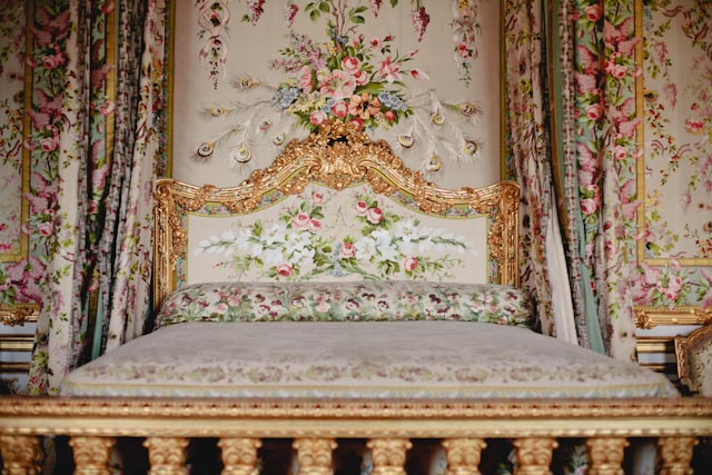 Marie Antoinette room - The cat, you and us