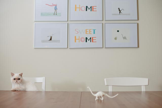 Put a white diplodocus in your home - The cat, you and us
