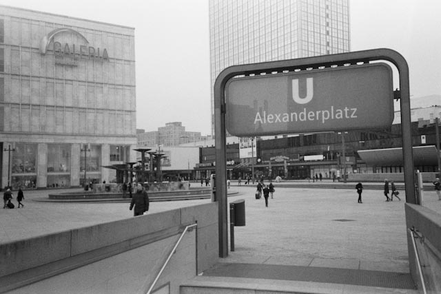 Alexanderplatz - The cat, you and us