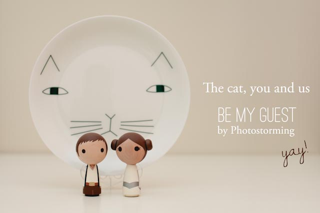 Be my guest - The cat, you and us