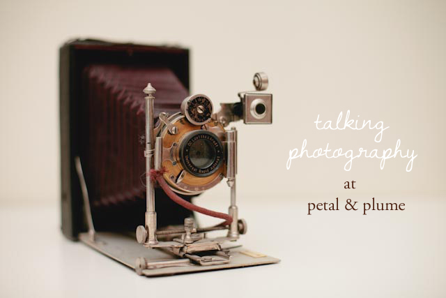 talking photography at petal and plume - The cat, you and us