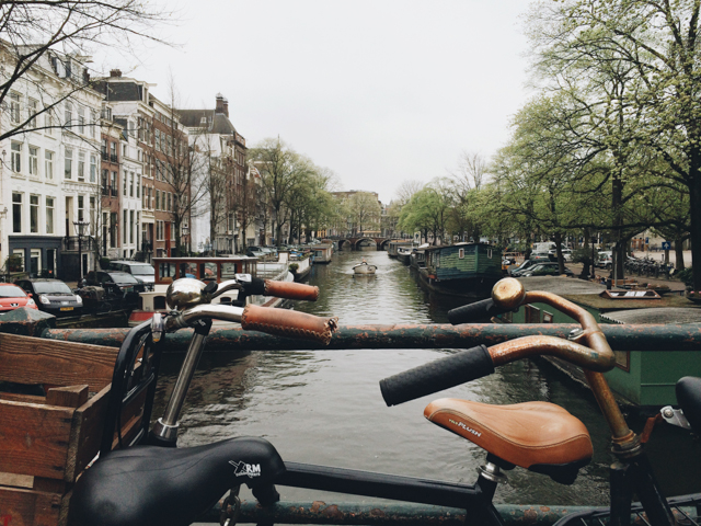 Amsterdam bikes and canals - The cat, you and us