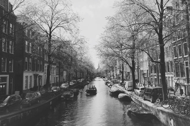 Classic canals - The cat, you and us