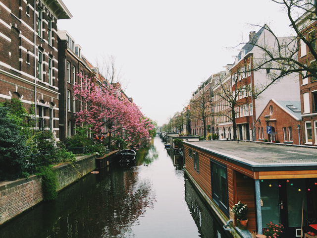prettiest canal - The cat, you and us