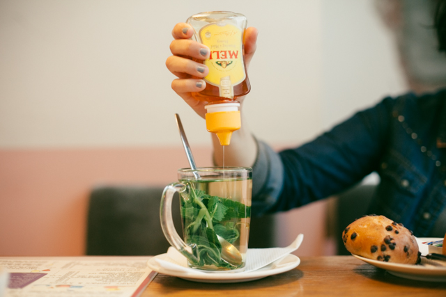 Fresh mint tea with honey - The cat, you and us