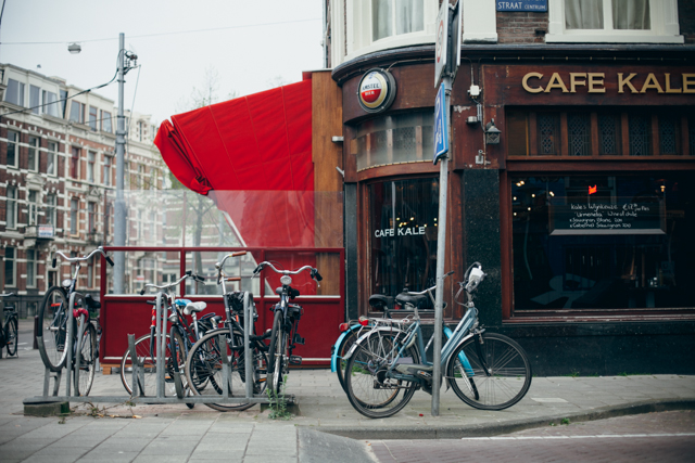Café and bikes - The cat, you and us