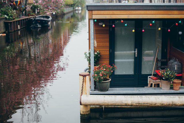 Amsterdam canal house - The cat, you and us