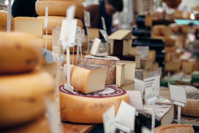 Amsterdam cheeses - The cat, you and us
