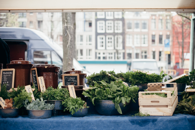 Herbs at Amsterdam's markets - The cat, you and us
