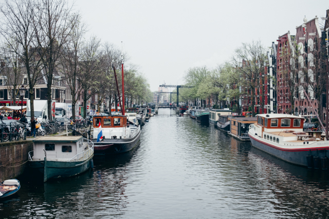 Amsterdam canals - The cat, you and us