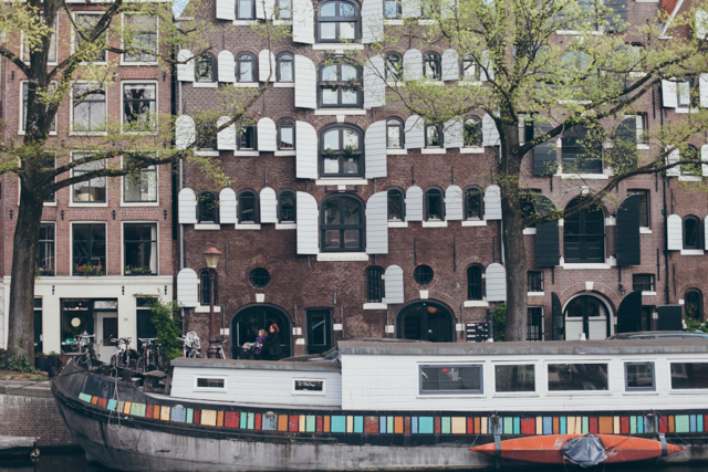 Amsterdam window shutters - The cat, you and us