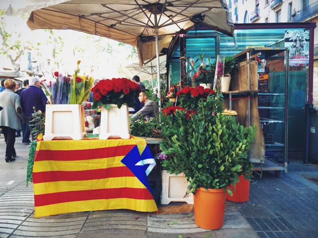 Sant Jordi stalls in Las Ramblas - The cat, you and us