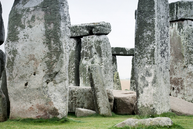 Stonehenge - The cat, you and us
