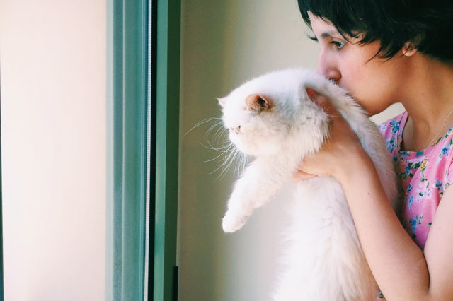 Juno peeking outside - The cat, you and us