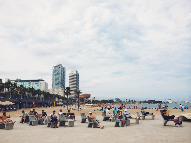 Barceloneta - The cat, you and us