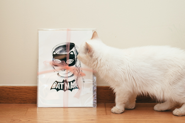 Catgirl & Juno - The cat, you and us