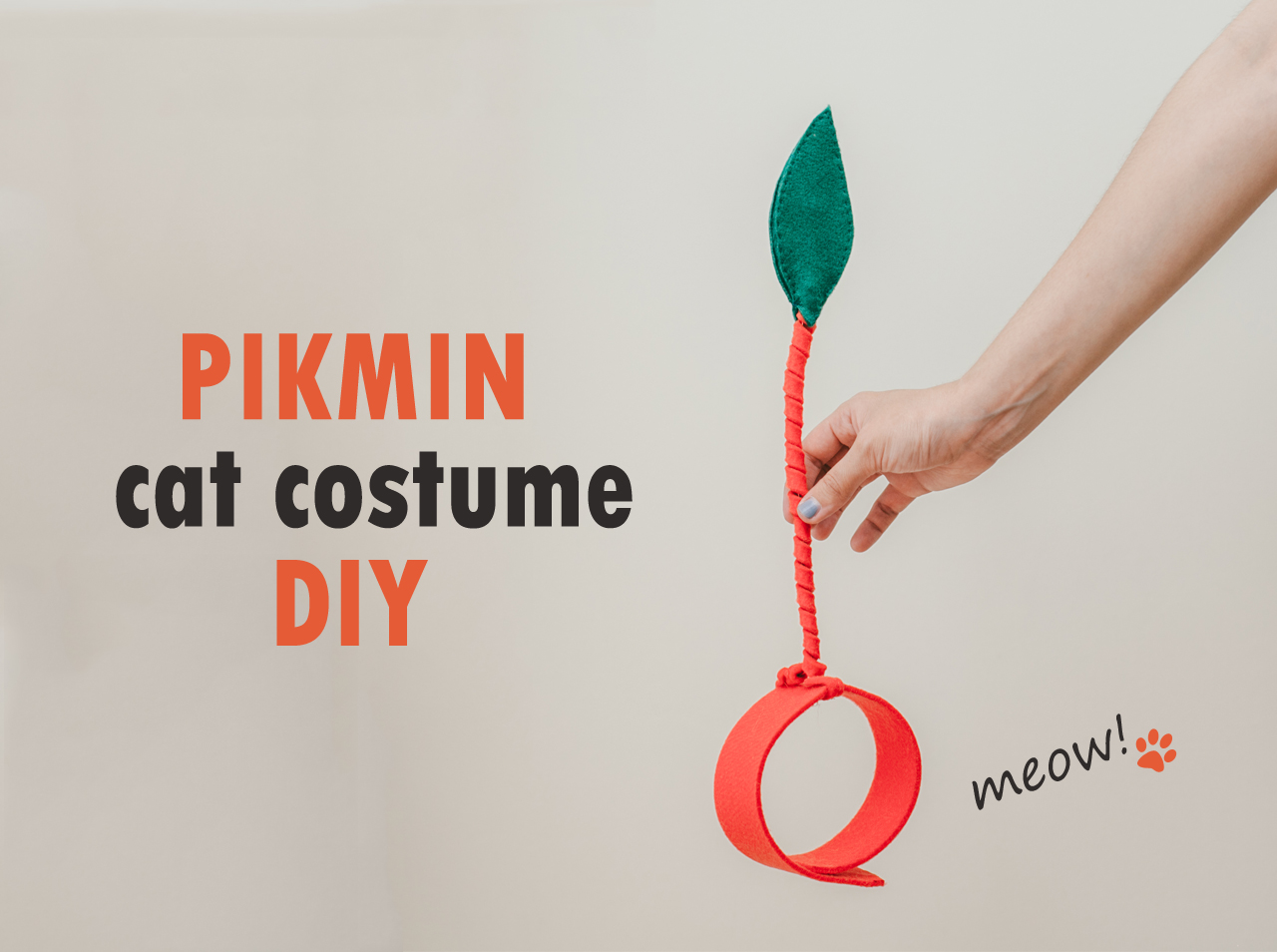 Pikmin cat costume DIY - The cat, you and us