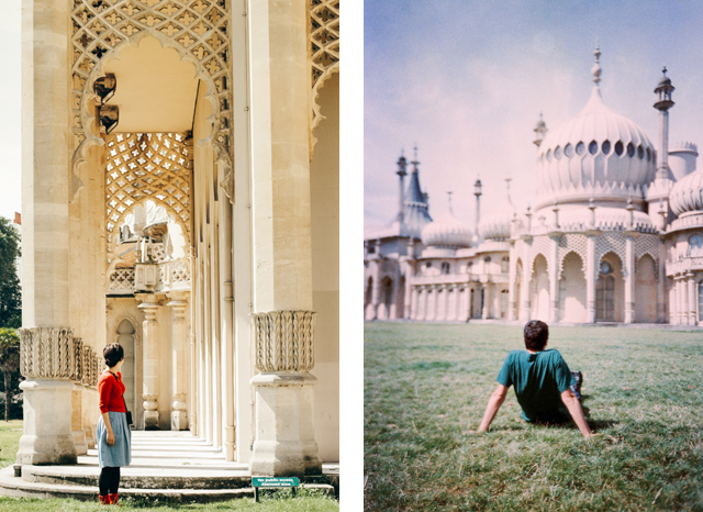 Royal Pavilion - The cat, you and us