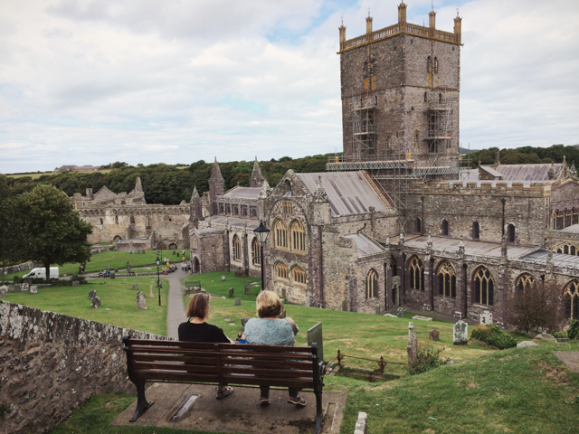 Saint Davids cathedral - The cat, you and us